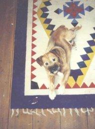 bert floor