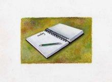diary400