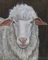wooly-sheep2