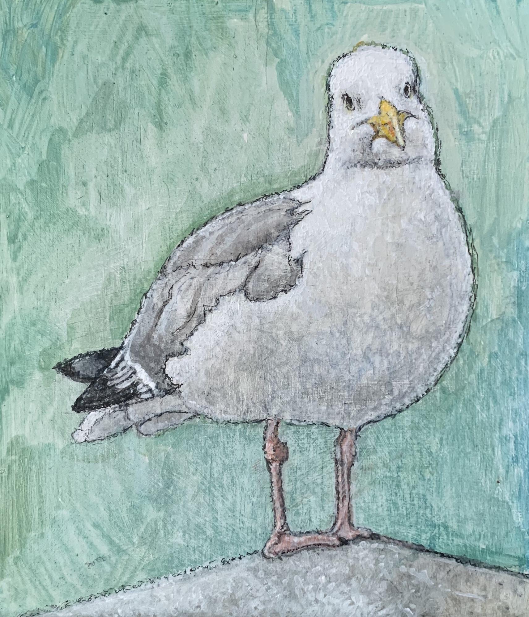 "Seagull 5""x6"""