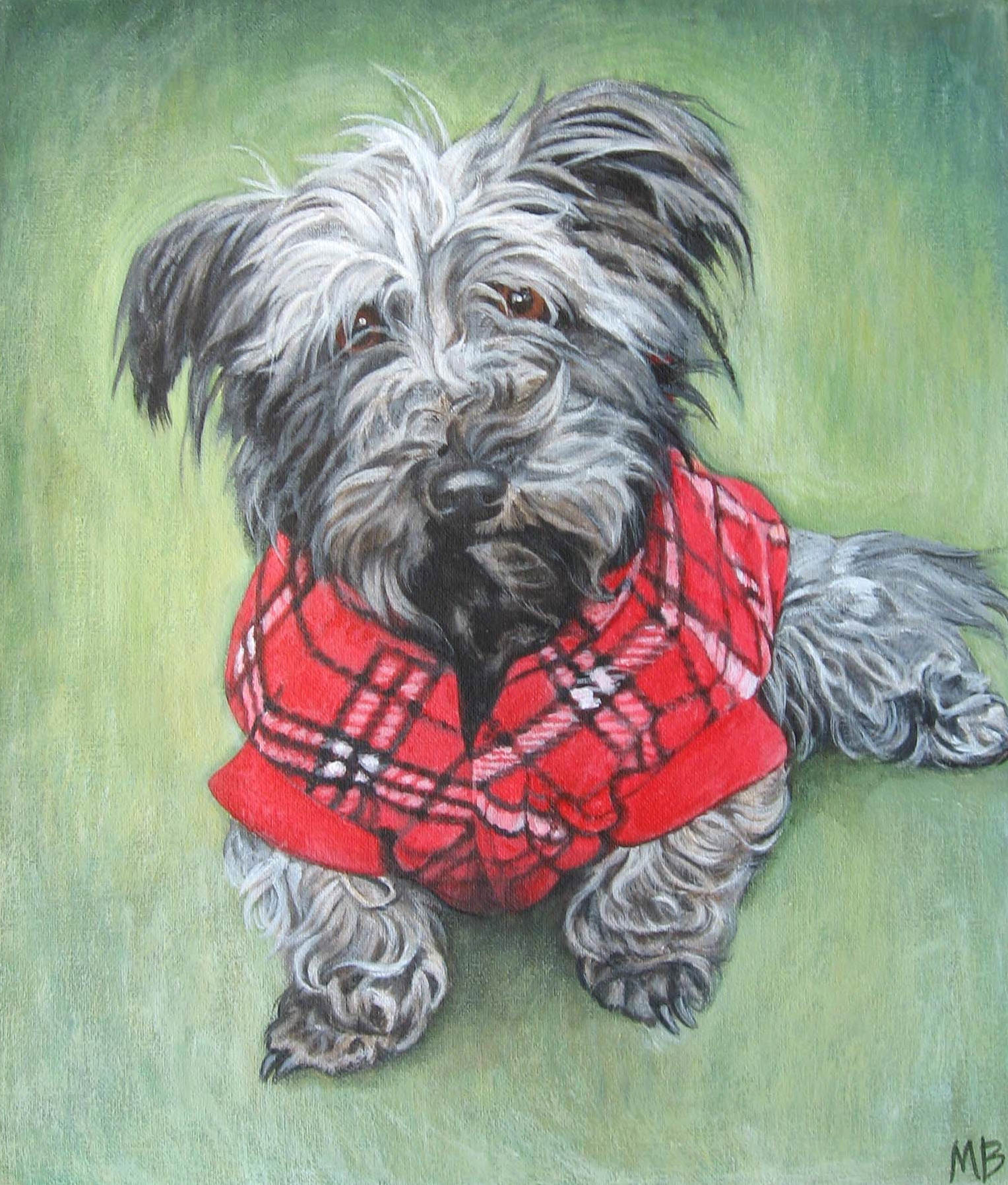 "Angus. 12""x14"". Acrylic on canvas."