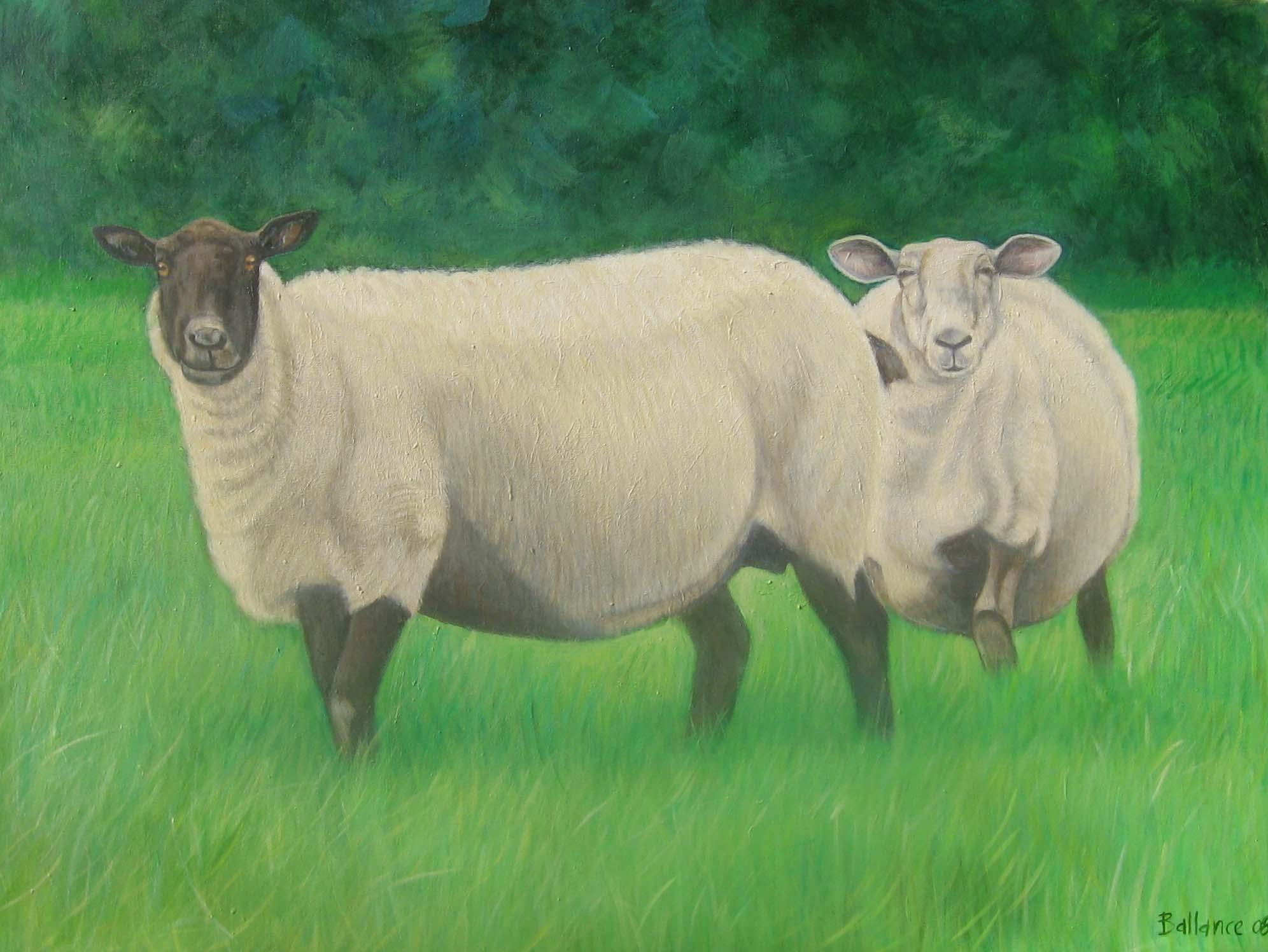 "Rodney's Sheep. 36""x48"". Acrylic on canvas."