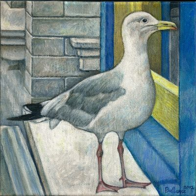 "Seagull at the Window. 8""x8"". Acrylic on canvas."