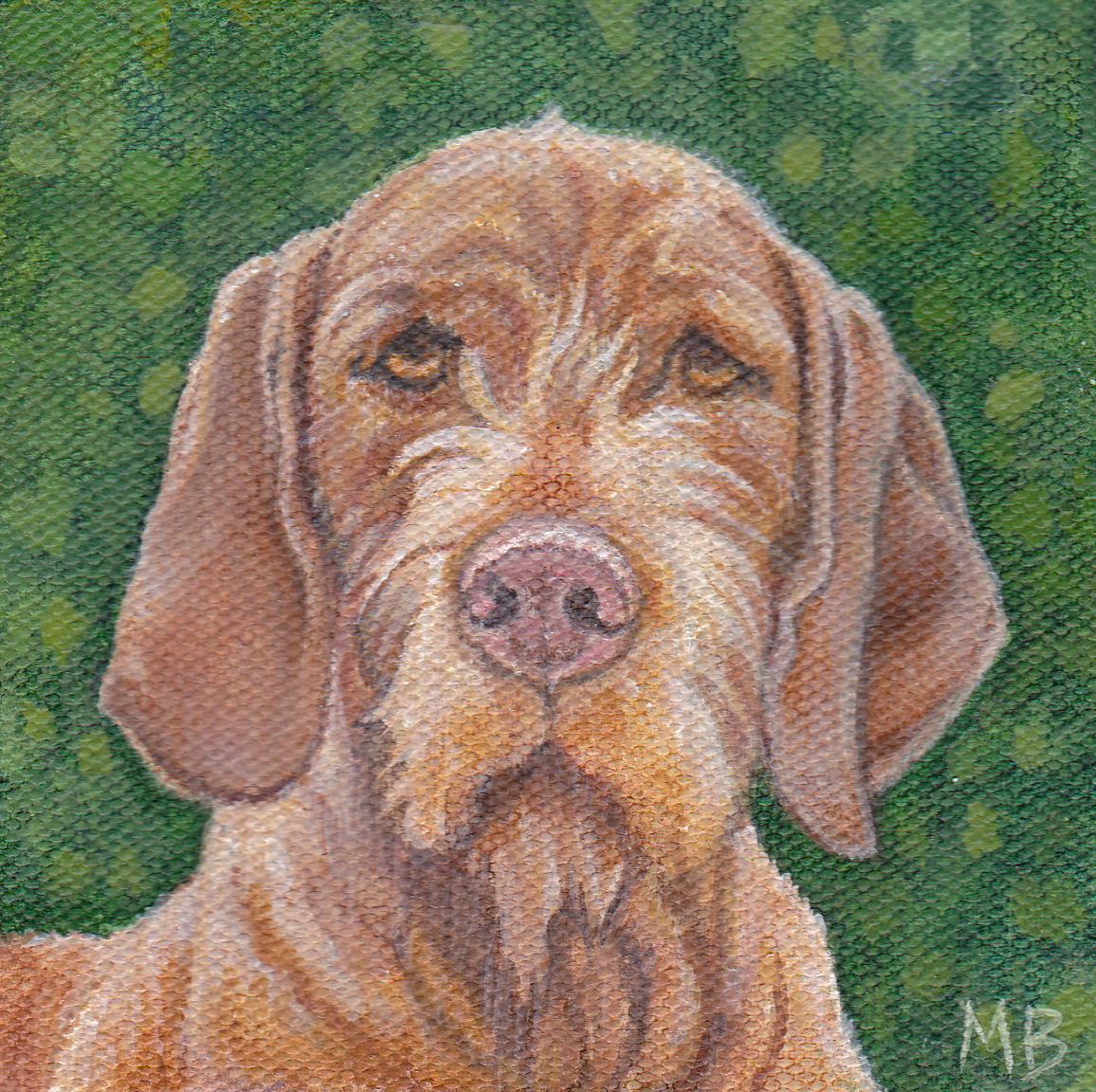 "Vizsla. 4""x4"". Acrylic on canvas."
