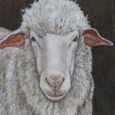 "Wooly Sheep. 8""x10"". Acrylic on canvas."