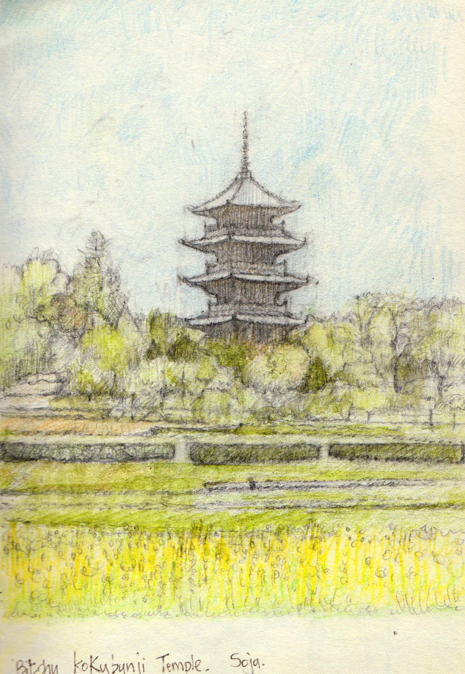 Soja Japan