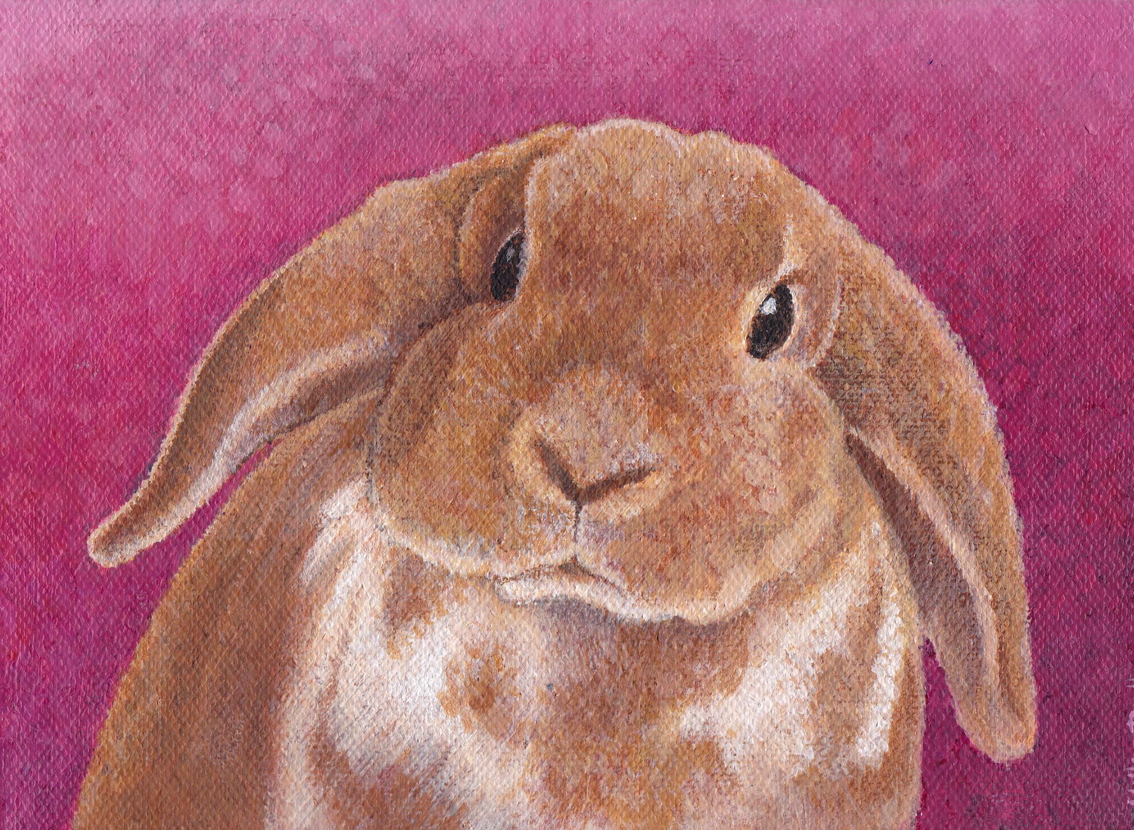 """Bunny 5""""x8"""" £95"""
